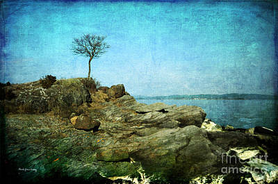 Photograph - A Tree By The Coast by Randi Grace Nilsberg