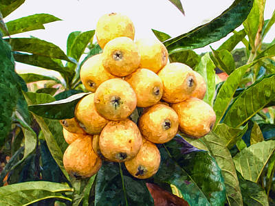 Rosaceae Painting - A Tree Full Of Ripe Loquats by Lanjee Chee