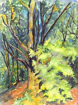 A Tree In Dunkeld Scotland Art Print by Carol Wisniewski