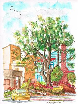 A Tree In Horn Drive - Hollywood Hills - Los Angeles - California Art Print