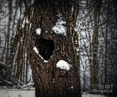 Art Print featuring the photograph A Tree With Heart by Brenda Bostic