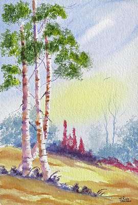 Painting - A Trio Of Birch by Rich Stedman