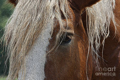 A Trusted Friend Art Print by Yvonne Wright