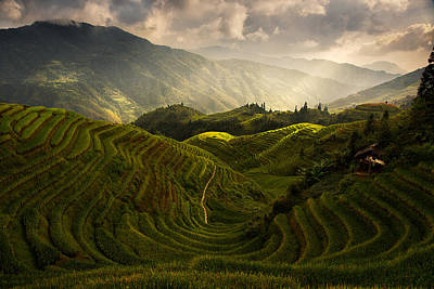 Plantations Photograph - A Tuscan Feel In China by Max Witjes