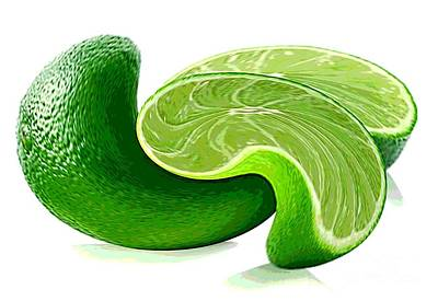 A Twist Of Lime Art Print by Spencer McKain