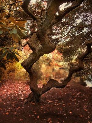 Twist Digital Art - A Twisted Tree by Jessica Jenney