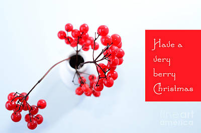 A Very Berry Christmas Art Print by Sabine Jacobs