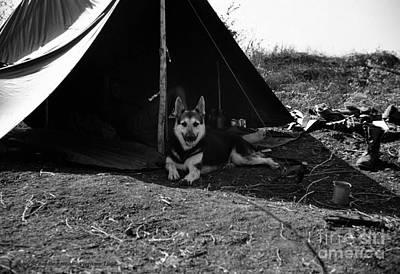 Photograph - A Vietnam Camping Trip by Mel Steinhauer