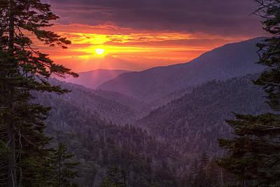 A View At Sunset Art Print