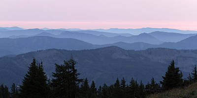 Photograph - A View From Timberline by Wes and Dotty Weber