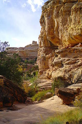 Capital Reef Photograph - A View Of Capital Reef National Park Utah by Jeff Swan