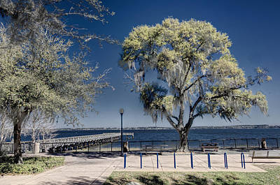 A View Of Lake Minneola Art Print