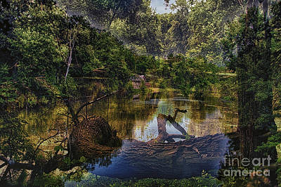 Nature Center Pond Digital Art - A View Of The Nature Center Merged Image by Thomas Woolworth
