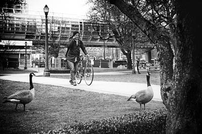 The Main Photograph - A Waddle In The Park by Paul W Sharpe Aka Wizard of Wonders