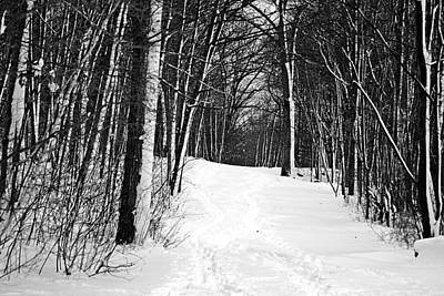 Photograph - A Walk In Snow by Joe Faherty