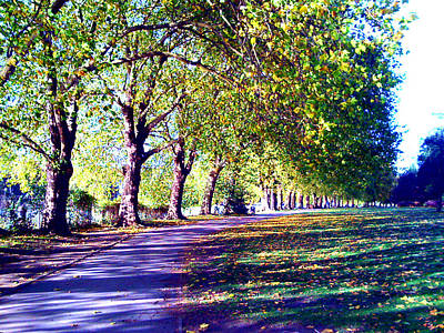 Digital Art - A Walk In The Park by A Dx
