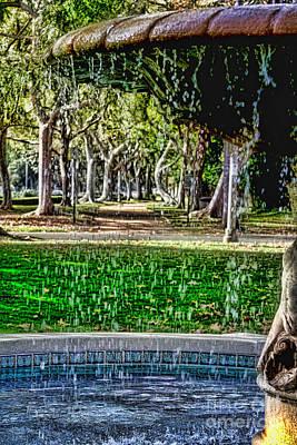 Photograph - A Walk In The Park By Diana Sainz by Diana Raquel Sainz