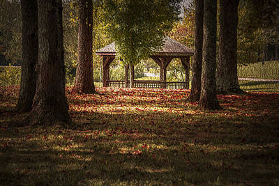 Photograph - A Walk In The Park by Cindy Rubin