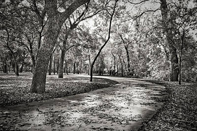 Photograph - A Walk In The Park by Darryl Dalton