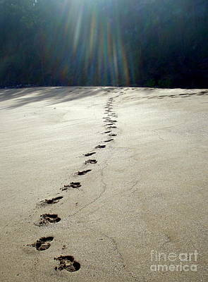 Photograph - A Walk In The Sand by Rachel Munoz Striggow