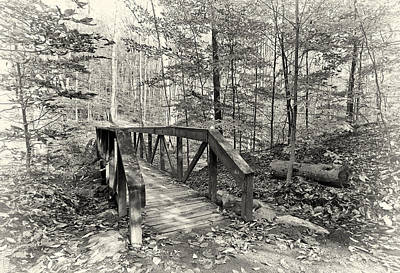 Bridge Photograph - A Walk In The Woods by Marcia Colelli