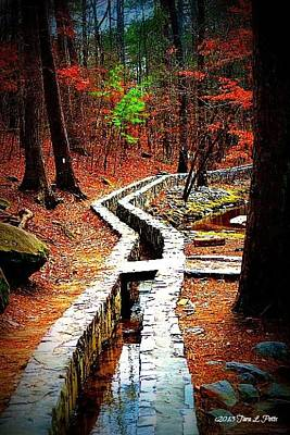 Art Print featuring the photograph A Walk Through The Woods by Tara Potts