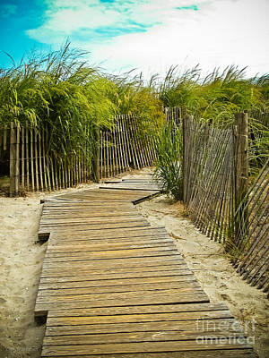 Beach Scenes Photograph - A Walk To The Beach by Colleen Kammerer