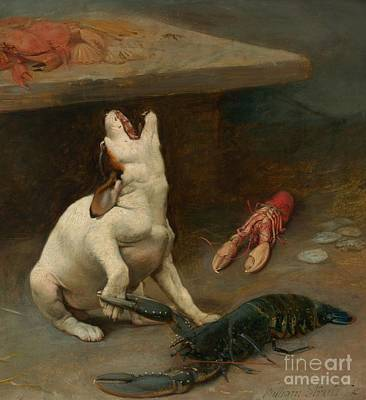 Lobster Claw Painting - A Warm Response by William Strutt