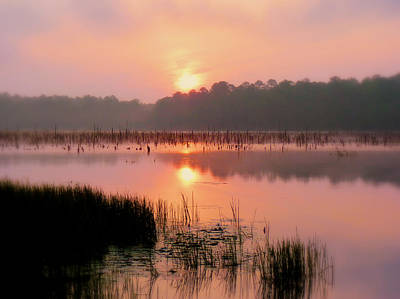 A Wetlands Sunrise Art Print by JC Findley