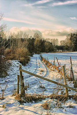 Photograph - A Whiff Of Winter by Jutta Maria Pusl