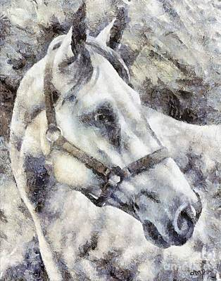 Horse Painting - A White Lipizzan Horse by Dragica  Micki Fortuna
