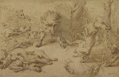 Frans Snyders Drawing - A Wild Boar At Bay Frans Snyders, Flemish by Litz Collection