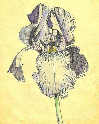 Photograph - A Wild Lavender Louisiana Iris by Michael Hoard