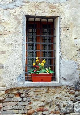A Window In Tuscany Art Print by Mel Steinhauer