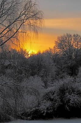 Photograph - A Winter Dawn by Georgia Hamlin