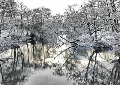 Photograph - A Winter Scene by Paul Gulliver