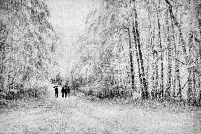 Winter Scene. Winter Landscape. Snow Landscape. Black And White. Birds Photograph - A Winter Stroll by Darren Fisher
