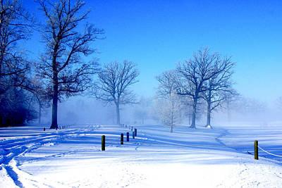 Wall Art - Photograph - A Winter Walk by Daniel Kleefeld