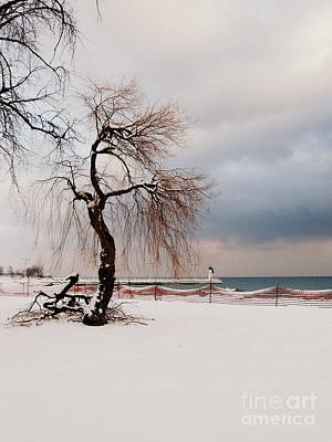 A Winter's Day On Lake Ontario Canada Art Print