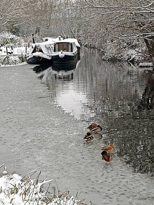 Photograph - A Winters Day On The River by Gill Billington