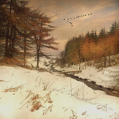 Art Print featuring the photograph A Winters Tale by Roy  McPeak
