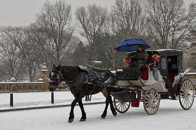 Photograph - A Wintry Ride by Cornelis Verwaal