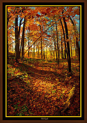 Photograph - A Wisconsin Autumn by Phil Koch