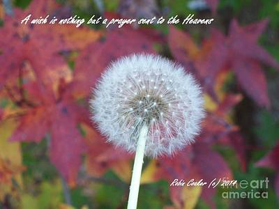 Photograph - A Wish For You by Robin Coaker