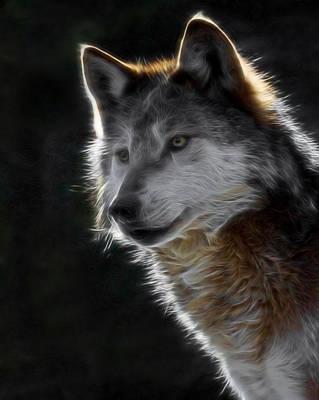 Canines Digital Art - A Wolf 2 Digital Art  by Ernie Echols