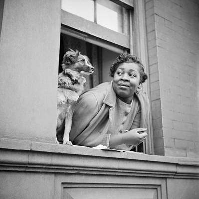 Harlem Wall Art - Photograph - A Woman And Her Dog by Gordon Parks