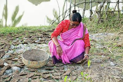 A Woman Collecting Dried Cow Dung Art Print by Ashley Cooper