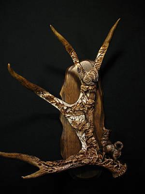 A Wood Grouse And A Laika Original
