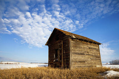 A Wooden Shed Stands Alone Art Print by Steve Nagy