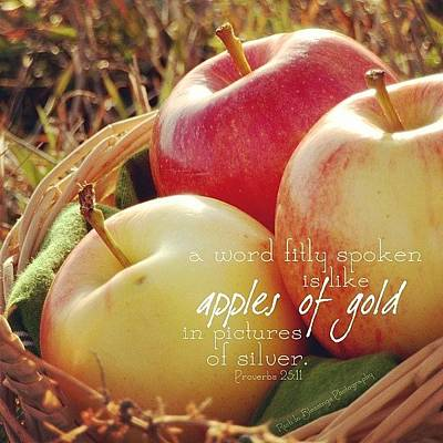 Apple Photograph - a Word Fitly Spoken Is Like Apples Of by Traci Beeson